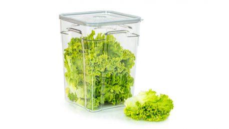 Gastro vakuumska posuda volumena 10 litara sa zelenom salatom