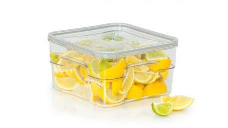 gastro vakuumska posuda volumena 4 litre s limunima