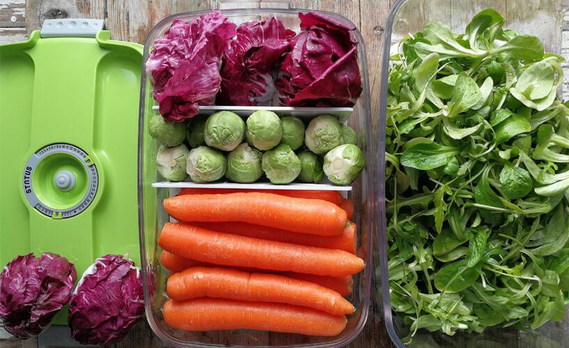 povrće u vakumskoj posudi